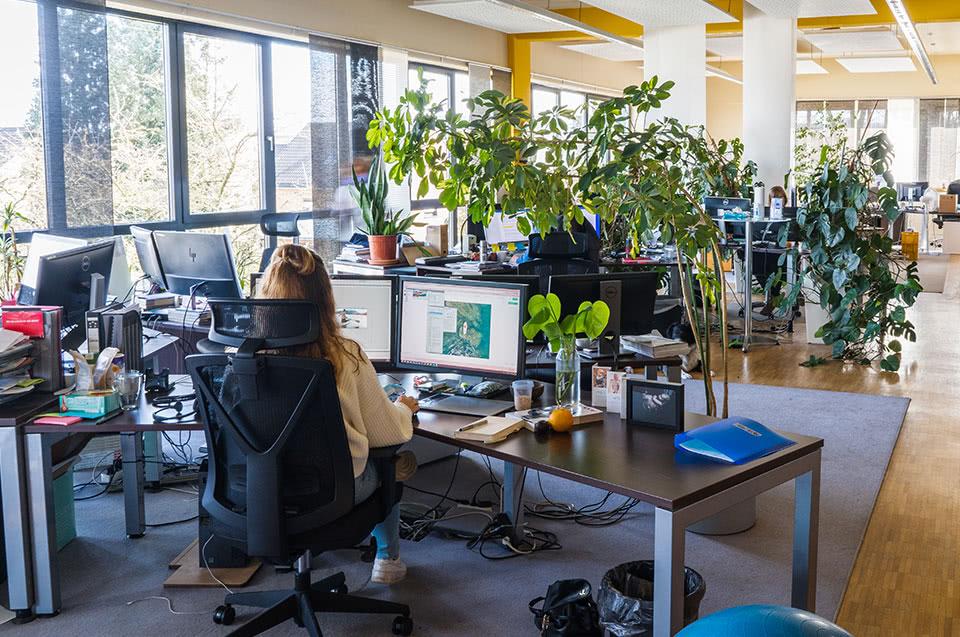Un posto di lavoro moderno, luminoso e verde
