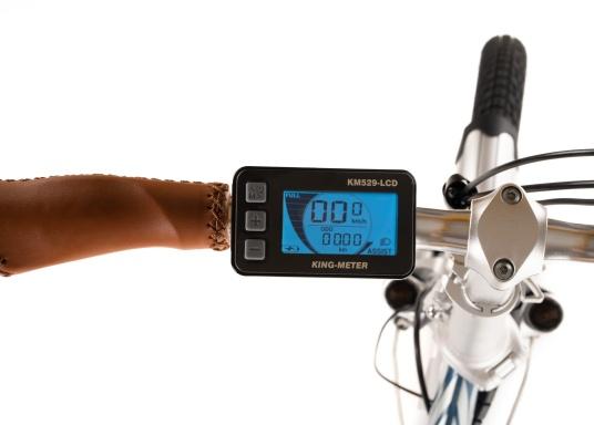 Con la nuova e-bike in alluminio BLIZZARD PRO, il viaggio diventa la meta. Come ulteriore sviluppo del popolare modello precedente BLIZZARD, avrai nuove funzionalità per un'autonomia e una flessibilità ancora maggiori. Lasciati sorprendere dalla nuova bici pieghevole senza dover rinunciare al piacere di guida! la consegna include una borsa per un comodo trasporto della bicicletta. (Immagine 8 di 12)